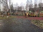 Ирина Чиркова вновь встретилась с активистами в парке Майский Архангельска